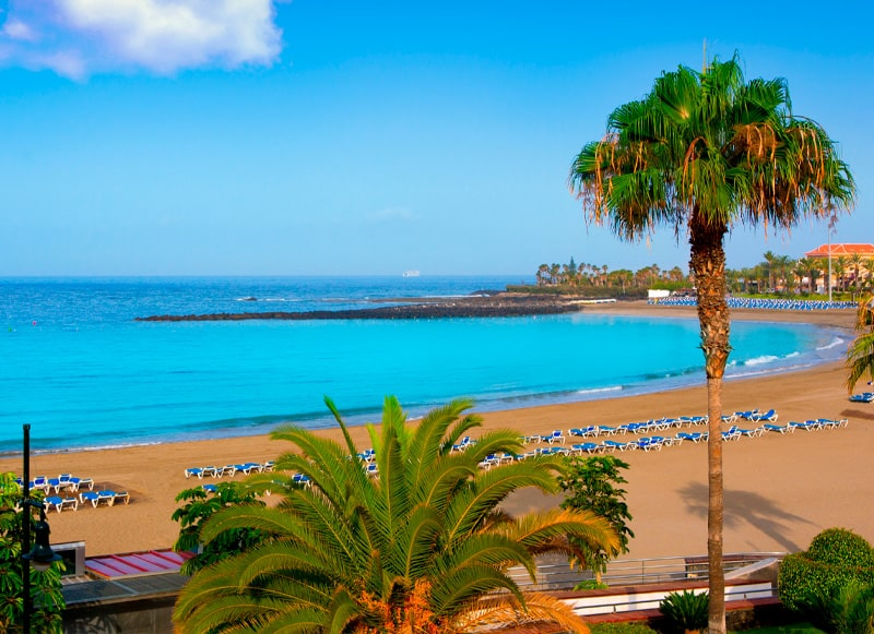 Tenerife South area