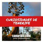 Curiosidades de Tenerife