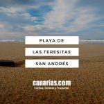 Playa de Las Teresitas Santa Cruz de Tenerife
