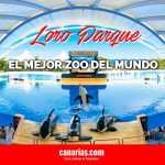 Loro Parque, Tenerife – El mejor zoológico del mundo