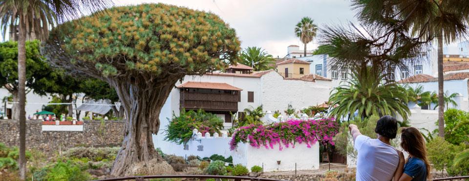 Municipios de Tenerife - Icod de Los Vinos