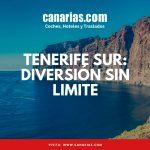 Tenerife Sur: Diversión sin límite